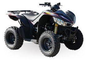 MAXXER 450i